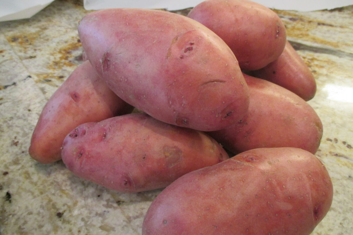 Red potato on the counter
