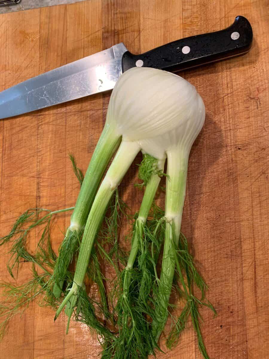 Fennel bulb on a cutting board.