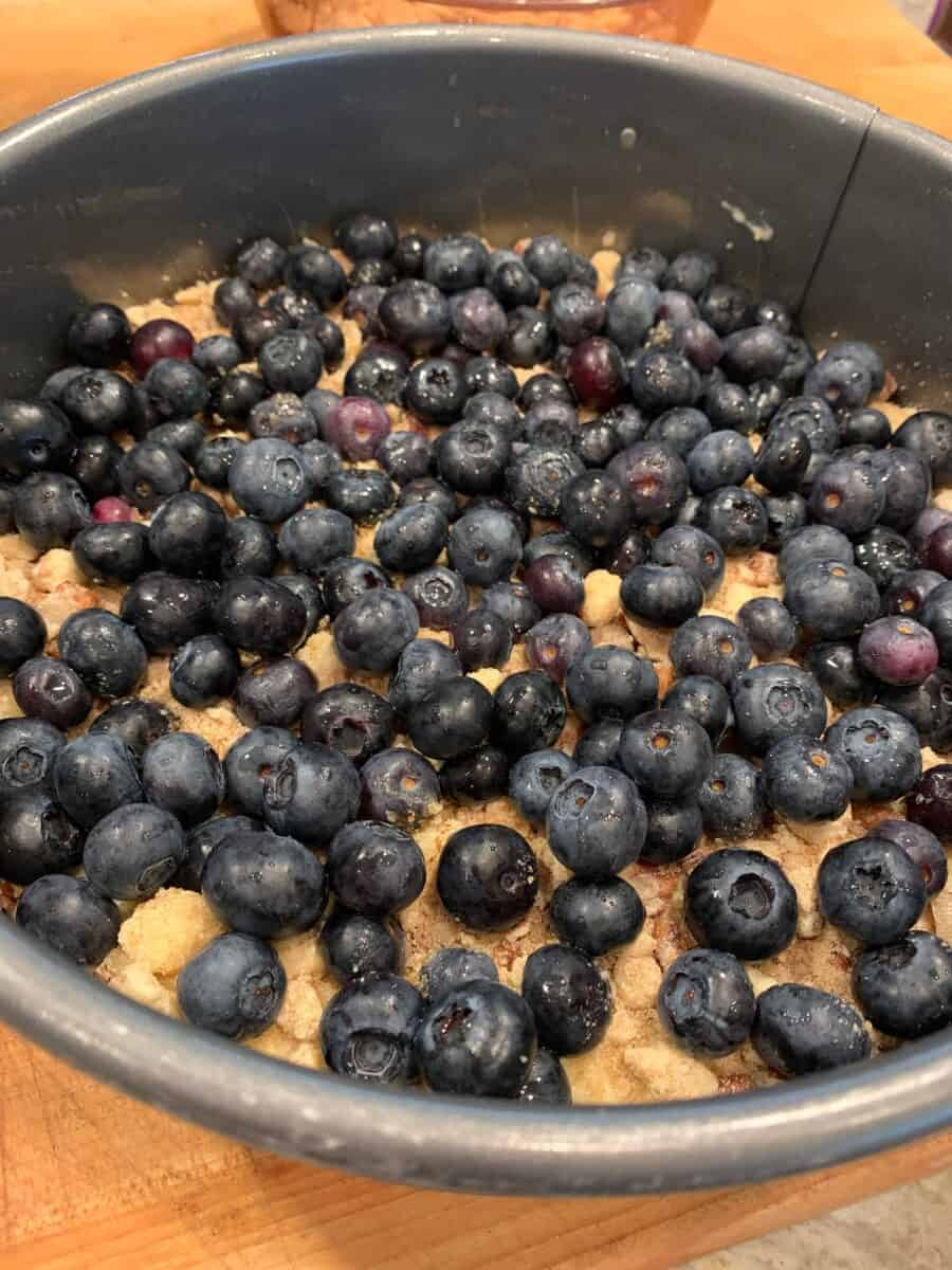 Blueberries on top of cake batter in a pan.